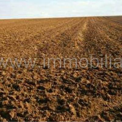 Terreno agricolo seminativo – Pasiano di Pordenone – rif.# IMV-E07/15